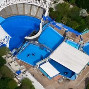 aerial view of Sea World orca stadium
